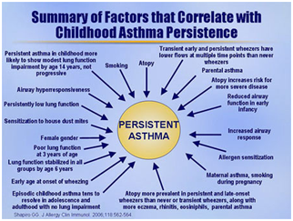 Asthma attack hospitalizations college essays
